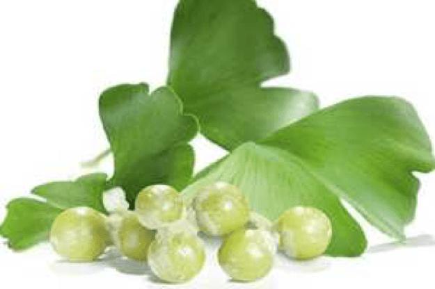 descr-imagen-ginkgo-biloba-extracto-medical-green-dismundonatural