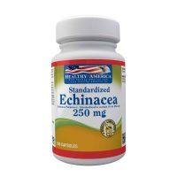 echinacea healthy america dismundonatural